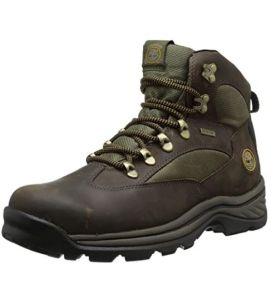 Timberland Men's Chocorua Trail Mid Hunting boots