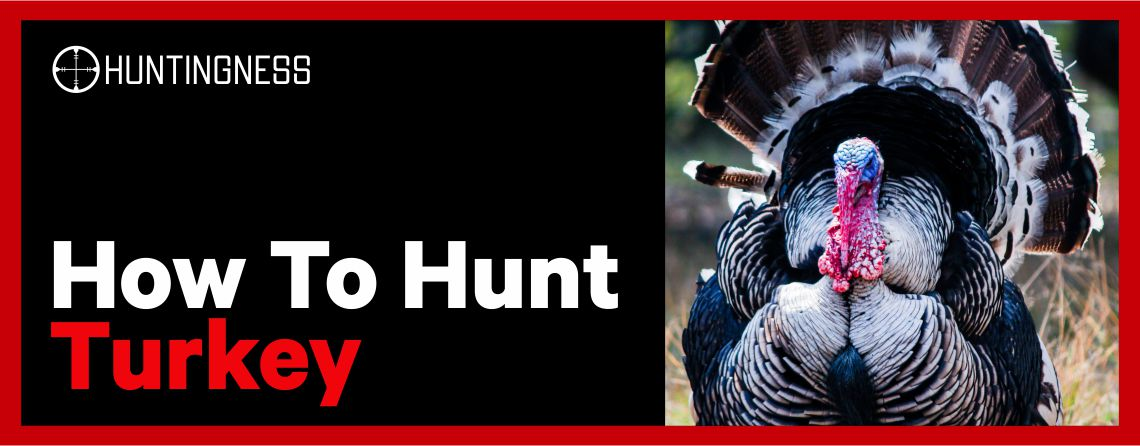 How to Hunt Turkey Tips and Tricks
